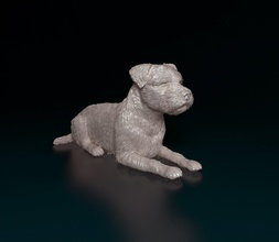 Rand Terrier Hund Tier Haustier drucken Rand Terrier