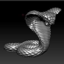 kobra yılan viper çıngıraklı yılan zehir kobra python anaconda boa yazıcı Minyatürler