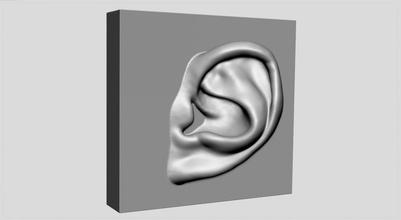 oído imprimible caracteres personas humano hombre masculino anatomía oído zbrush stl obj
