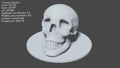 human skull skull human print blender games sculptures-and-figures body head video free hightpoly