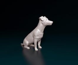 Jack Russell Terrier Hund Tier Haustier drucken Jack Russell Terrier