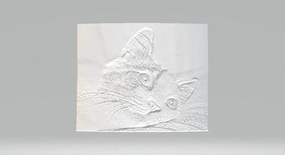 lithophane chat d'impression prêt lithophane la lithographie la lithosphère litho lithosphérique atum68