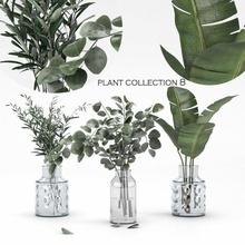 plant collection 8 palm olive-plant bouquet flower eucalyptus banana-palm glass-vase decor-set decorative-set office-plant livingroo-plant bedroom-plant household home-fragrances