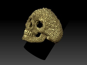 skull ring ring letter alphabet primer text jewelery gold silver jewelry skull man skeleton head human teeth art male death scull rings