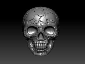 skull ring crack ring letter alphabet primer text jewelery gold silver jewelry skull man skeleton head human teeth art male death scull rings