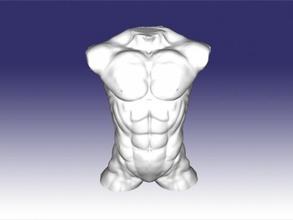 guy's torso free 3d model - download stl file Art Sculpture