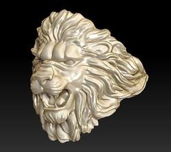 hombre leon