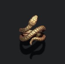 yılan yüzük mücevher altın yazdırılabilir Gümüş mücevher nişan ayrıntılı kadın yılan takı sürüngen çıngıraklı yılan atrox yılan yılanlar zehir zehirli venom viper kobra yüzük