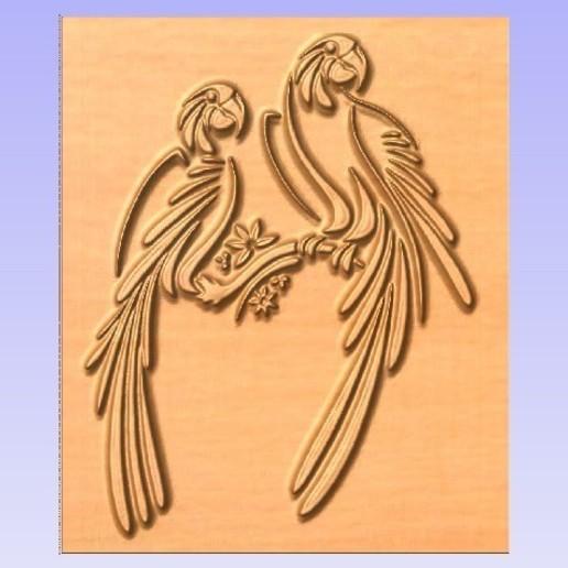2 parrots various bird pa