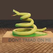 anarko-kapitalizm çeşitli yılan hayvan çıngıraklı yılan kapitalizm çıngırak özgürlükçü