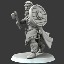 barbu slave guerrier armé hache bois bouclier celtique Gaule gaulois slave slave ancien guerrier axeman infanterie bouclier barbare