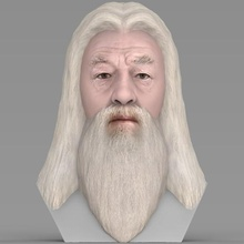 dumbledore, harry potter busto completa cor de impressão 3d a arte albus dumbledore harry potter o filme o personagem do busto severus snape lord voldemort hogwarths ron weasley hagrid malfoy gryffindor slytherin rowling