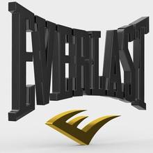logo everlast moda boutique brand abbigliamento il design modello shop store carattere emblema il logo stile modelli simbolo di lusso moda accessori moda elegante tendenza logotipe logotipo di stampa stampabile