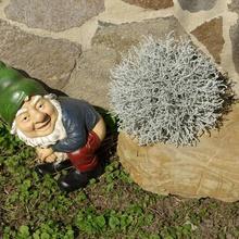 gnome happy art gnome happy poppin garden lucky sex toy