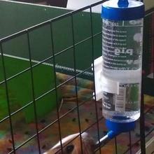 Guinea Schwein amp Gittergewebe Panel Haustier Wasser Flasche Adapter Haken Teller 2 Versionen Adapter Käfig Meerschweinchen Clip Getränk Trinken Getränk Flasche Gitter Panel Meerschweinchen Guinea Schwein