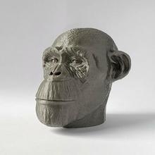 man chimp chimpanzee monkey animal sculpt lion elephant wildlife