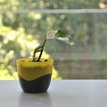 mini plantador mini plantador maceta planta maceta taza organizador decoración