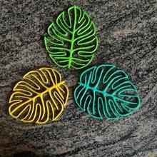 monstera hoja colección colección decoración monstera hoja natural naturaleza decoración pared contorno hojas planta maceta palma verano Fresco vistoso brillante lindo casa