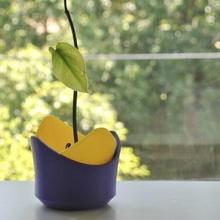 pétalo plantador pétalo plantador maceta planta maceta taza organizador decoración