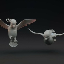 pidgeot - 2 poses pre-supported pokemon pokemon collectible model toy digimon anime collectable
