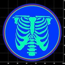 rib cage skeleton cookie cutter home bones bone rib cage ribcage cage rib med anatomy skeleton cookie cutter cutter cookies cookie toy