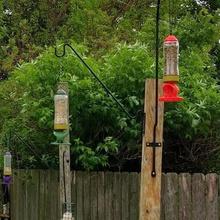 rocket ship bird feeder home mason-jar bird-seed foody bird-eating bird-creeping ornitholigist ornithology birding bird-peeping bird-food bird-watching birdfeeder feeding bird watching animal birds