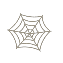 spider's web coaster coasters spider's web web around the house spooky halloween creepy home