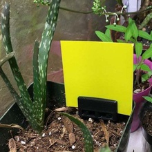 sticky trap holder home flypaper fly trap fruit fly trap gnat gnats sticky trap trap yellow sticky board outdoor garden