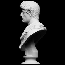 portrait panther skin shoulder scan bust female portrait roman male plaster copy unknown artec openglam artec-eva smk-open