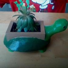 tartaruga Panela jardim flor animal Panela tartaruga plantio