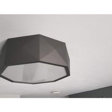 modern ceiling light & garden lamp light modern decor