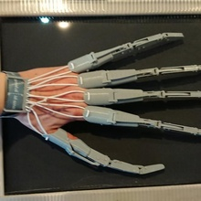 mafsallı parmak uzantılar parmaklar el mafsallı uzantı