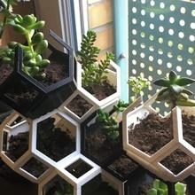 plantygone remix modulaire géométrique empilement planteur DIY jardin géométrique rayon miel modulaire jardinage cactus planteur polygone Extérieur intérieur imbriqué remix empilement fusion360 octaèdre succulent cactus mosaïque