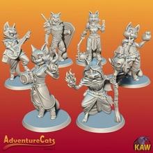 aventura gatos Series 1 loja gato fofa fantasia miniatura aventura bruxo paladino gatos Vampiro feiticeira clérigo bardo Tabaxi