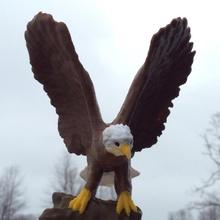 eagle aviary bird eagle dungeon d&d dnd birdie asllexicon olsen todd olsen & starlabs3d star labs 3d starlabs3dcrypto toy bird bird aviary birdy american eagle bald eagle bird prey