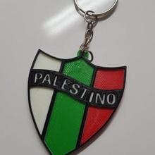 llavero palestino equipo chileno futbol