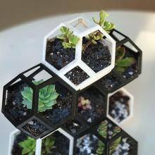 plantygone modulaire géométrique empilement planteur jardin jardin géométrique rayon miel modulaire jardinage cactus planteur polygone Extérieur intérieur imbriqué empilement fusion360 octaèdre succulent cactus mosaïque