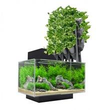 modulaire aquaponie installer jardin modulaire recyclage grandir installer aquaponie