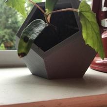 dodecaedro plantador jardín