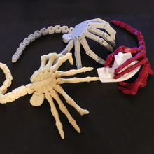 flexi-facehugger toys & games print alien movie toy toys flexible facehugger articulated scifi prusa flexi fidget anycubic i3mega