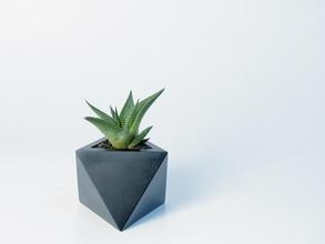 octaedro planteur pinshape l'octaèdre dodécaèdre mathématiques plantes grasses cactus maison décor design d'intérieur porte plume élégant moderne