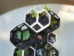 plantygon modulaire géométrique l'empilement planteur pinshape forme polygonale nid d'abeille verrouillage l'octaèdre cactus jardin pavage succulente jardinage l'empilement modulaire polygone géométriques jardinière