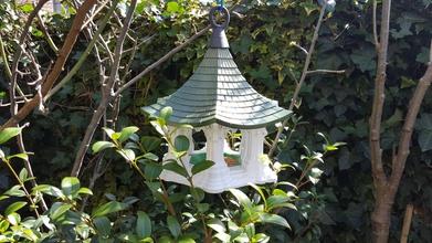 bird temple pinshape temples air-tempel tempel bird-tempel bird-temple temple feeder bird-feeders birds bird birdhouse bird-feeder bird feeder birdfeeder bird-house birdfeeders