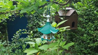 bird feeder air temple pinshape temples temple bird-tempel tempel air-tempel birdfeeders birdfeeder bird-house bird-temple bird-feeders bird bird-feeder birdhouse