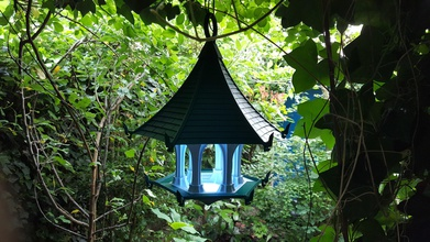 light sky bird temple pinshape temples bird-tempel tempel led lamp lamps temple bird-feeder birdhouse bird bird-temple bird-house bird-feeders bird feeder birdfeeders
