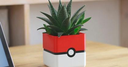 pokemon plant