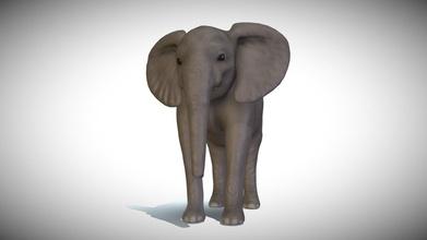baby elephant model - 3d model heyyjayy heyyjayy 2f82255 baby elephant model - 3d model heyyjayy heyyjayy 2f82255