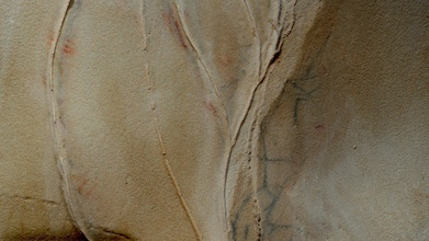 escoural cave rock art painting panel 23 26 - download free 3d model global digital heritage globaldigitalheritage 860b06b discovered april afternoon 1963 after explosion quarry escoural cave proved unavoidable site history archeology portugal cavel represents today transcends its tourist value assumes itself international reference paleolithic art westernmost point europe such artistic representations prehistory cave art escoural cave fits chronologically between 20 000 18 000 years a c addition engravings paintings depicting various figures aurochs equines well geometrical also known 3d model motifs 23 26 depicting several bovines hybrid figure well several undetermined strokes one main panels escoural cave occupying central spot inside natural cavity - escoural cave rock art painting panel 23 26 - download free 3d model global digital heritage globaldigitalheritage 860b06b