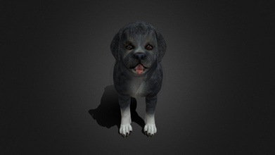 fdji-003 standing dog - buy royalty free 3d model ipoypunk ipoypunk 983e6f6 rigged animated female dog 3d model standing place cycle additional textures pbr render included - fdji-003 standing dog - buy royalty free 3d model ipoypunk ipoypunk 983e6f6