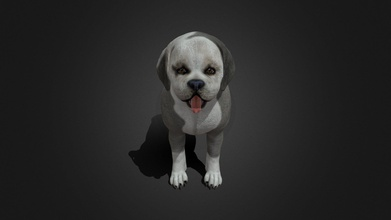 fdji-005 standing dog - buy royalty free 3d model ipoypunk ipoypunk a1be34f rigged animated female dog 3d model standing place cycle additional textures pbr render included - fdji-005 standing dog - buy royalty free 3d model ipoypunk ipoypunk a1be34f